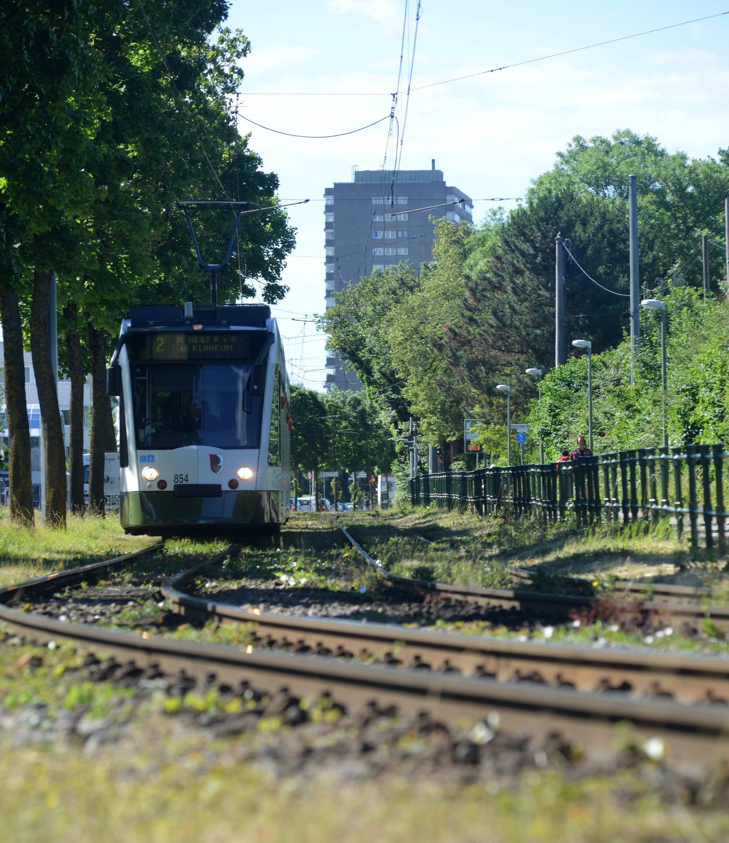 Während der Sommerferien werden die Gleise der Straßenbahnlinie 2 zwischen Schertlinstraße und Haunstetten ausgetauscht. Deshalb fahren Busse statt Straßenbahnen. Foto: swa / Thomas Hosemann